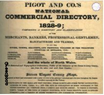 1828-9 PIGOT & CO'S NATIONAL COMMERCIAL DIRECTORY - DOWNLOAD [Free Delivery]